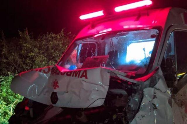 Ambulância tenta desviar de animal na BR 230