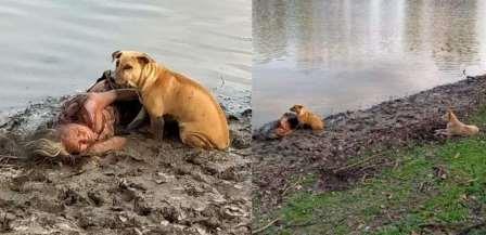 idosa-cai-na-beira-de-um-rio-e-e-protegida-por-cachorros-no-nepal