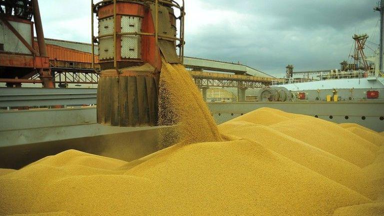 Exportação de grãos não deverá ser afetada