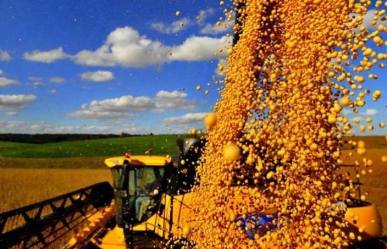 leva transações sem comissão ao agronegócio