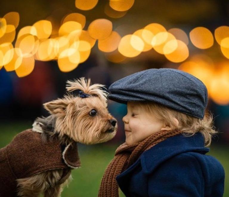 Menino e cadela se tornam amigos inseparáveis e comovem internautas