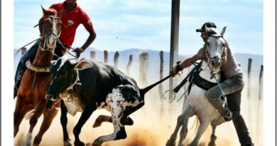 João Azevêdo libera vaquejadas e outros eventos agropecuários em toda Paraíba